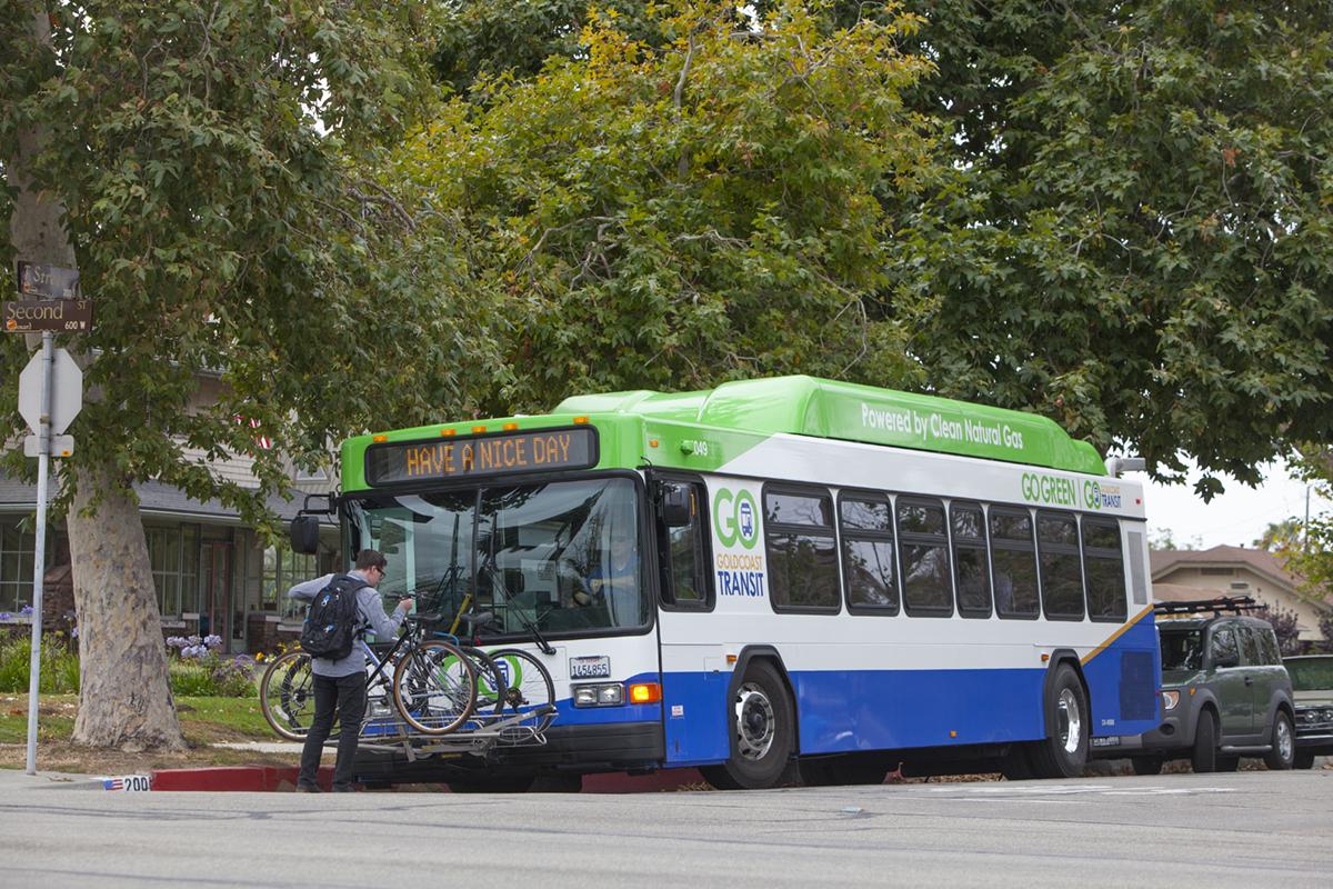 gold coast transit bus current design